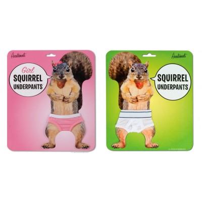 Sous-vêtements écureuil - Squirrel Underpants